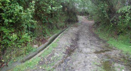 AMUT'Caminhando – Corno de Javali e Bico de Chapim, Paredes de Coura