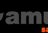 AMUT_SAUDE_Transparente_2020